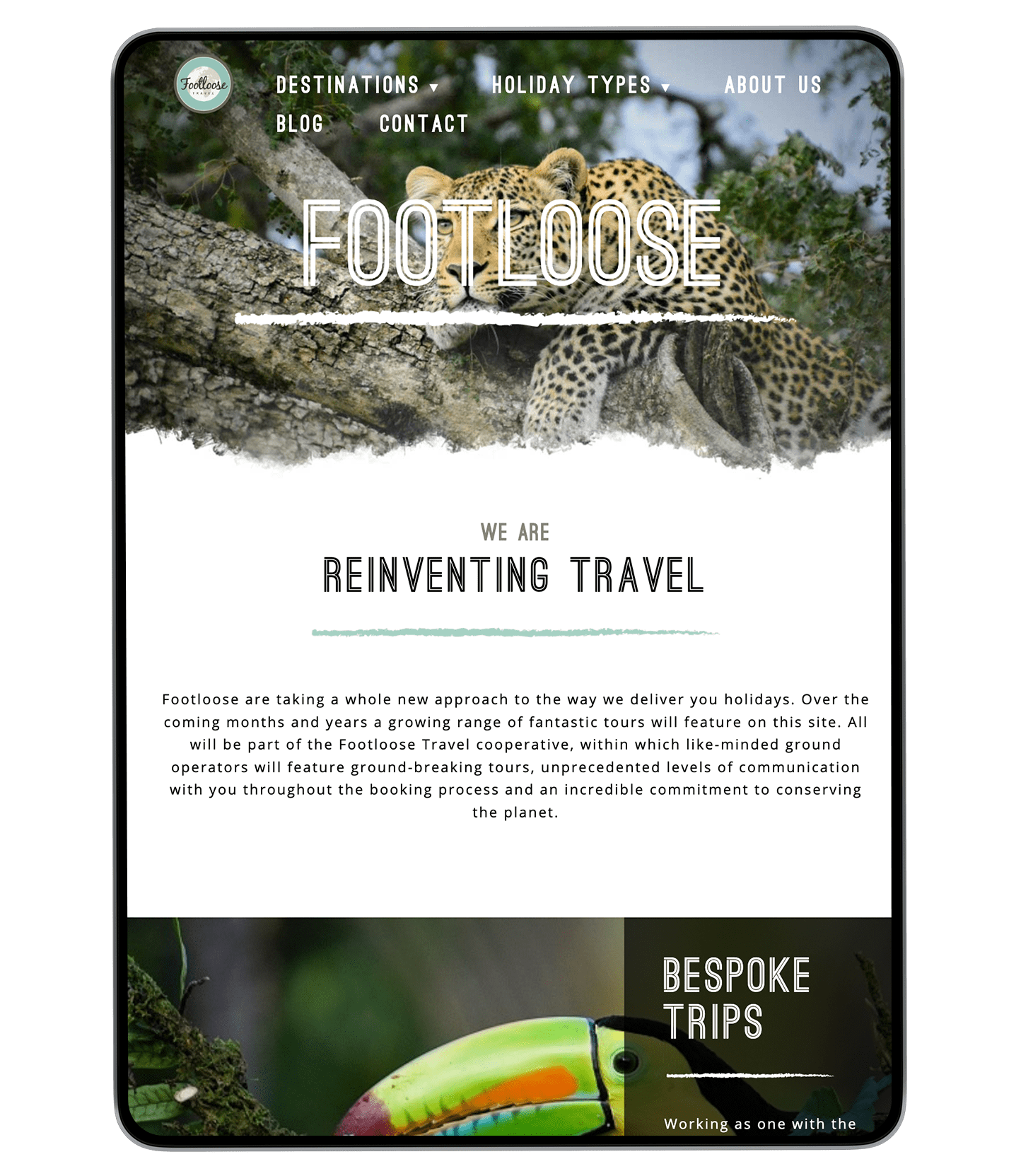 Footloose Website Design on iPad